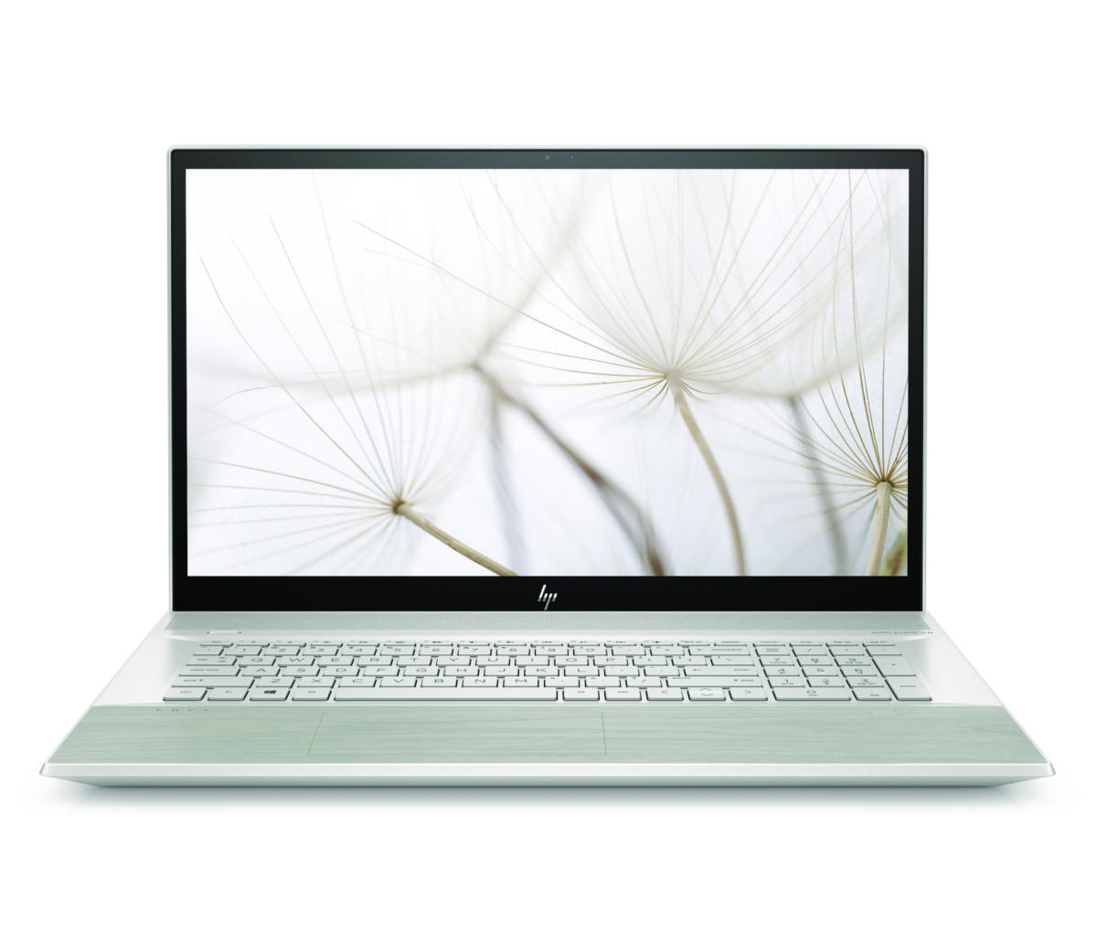 hp envy 17 in natural silver pale birch front