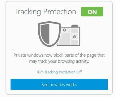 privacy windows