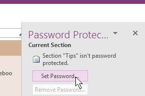 password 300