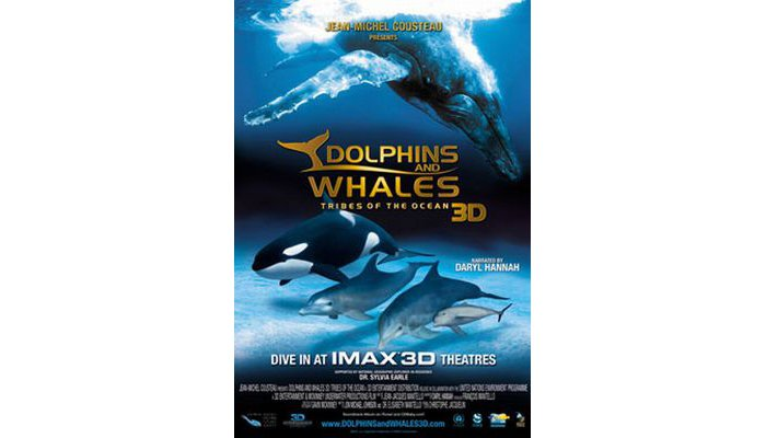 Dolphins And Whales 3D