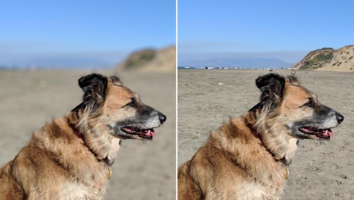 pixel 2 portrait comparison