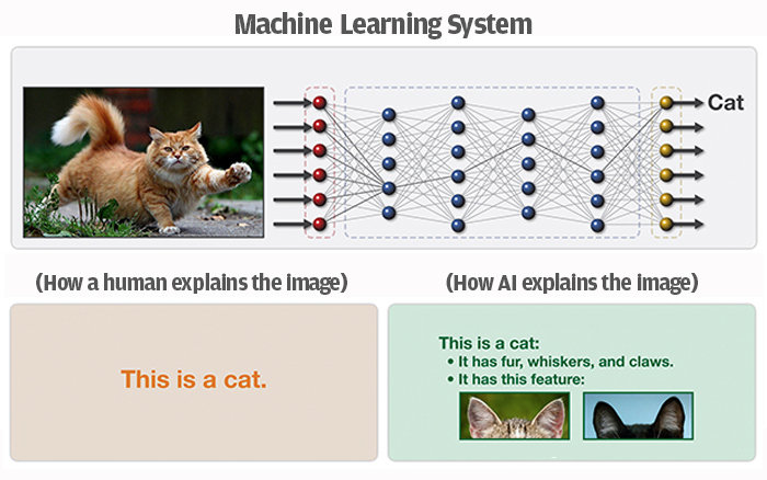 cat machine learning system chart darpa