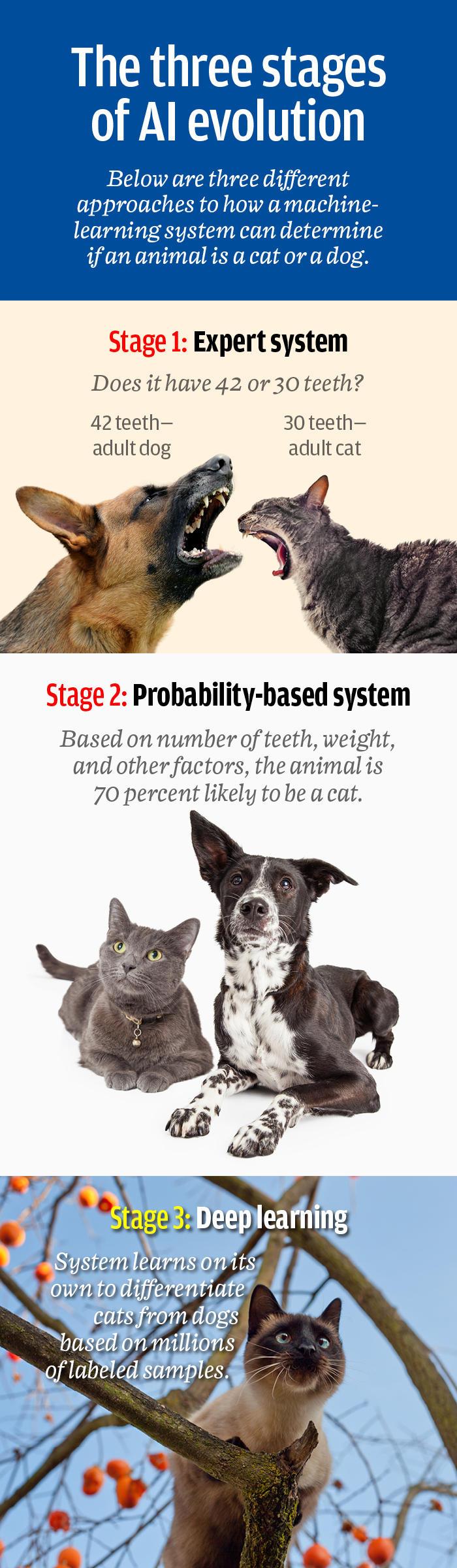 three stages evolution infog