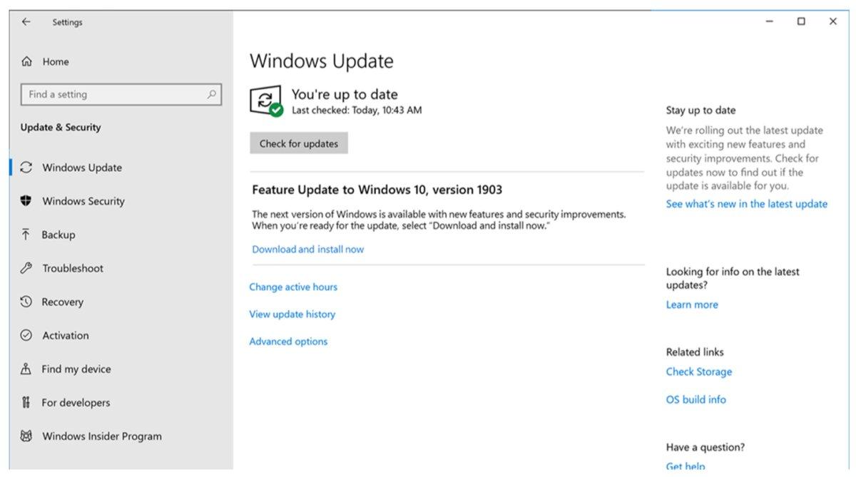Microsoft Windows 10 May 2019 Update Windows Update