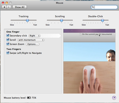 Magic Mouse Preferences